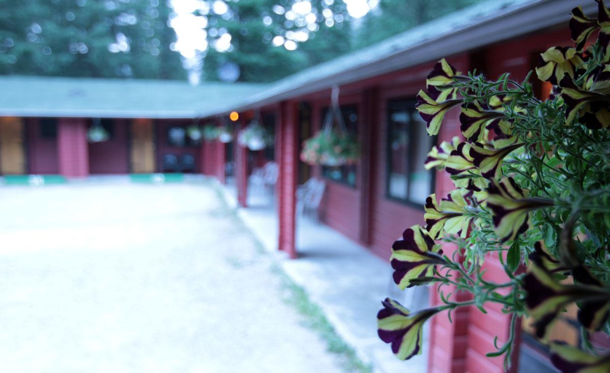 Miette Hot Springs Bungalows exterior